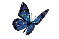RTEmagicC_papillon_200_133
