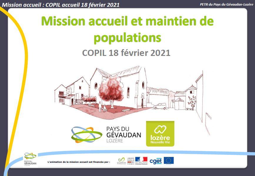 Image COPIL accueil 18 février 2021